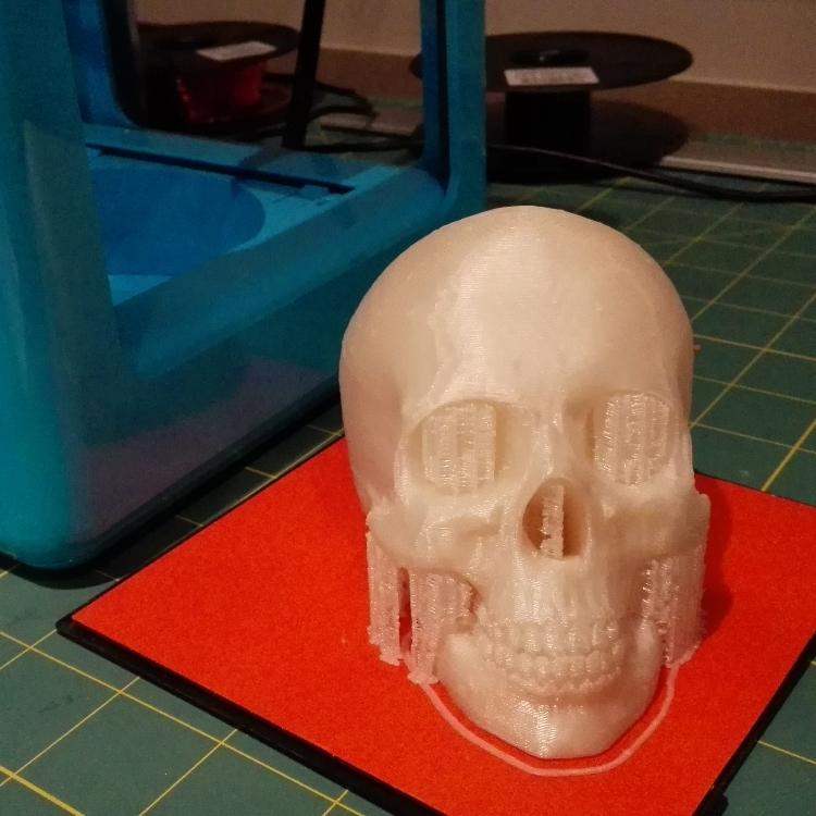 Microplus_skull_pearlwhite_750x750