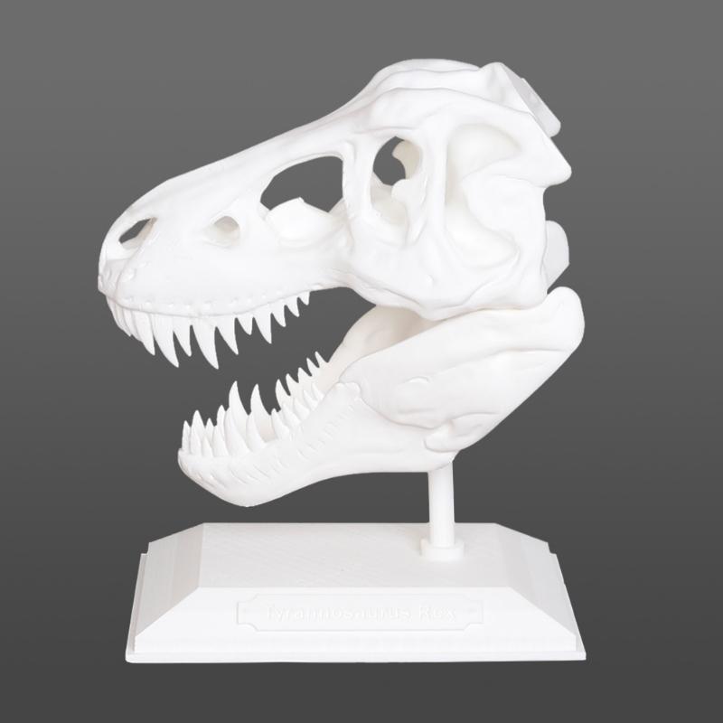 Formbot-Raptor_6_800x800