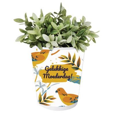 Pot de fleurs personnalisé pour la fête des mères