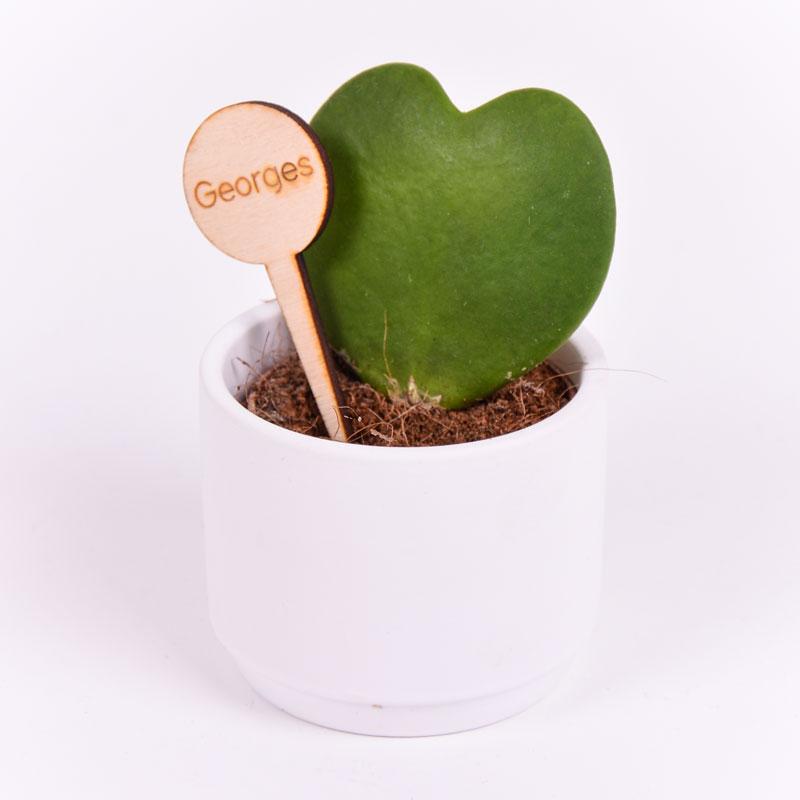Gegraveerde plantenprikker rond incl. potje Georges