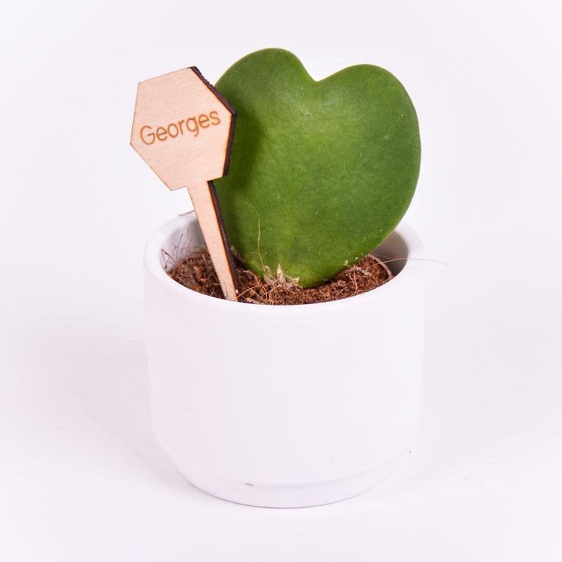 Gegraveerde plantenprikker zeshoek incl. potje Georges