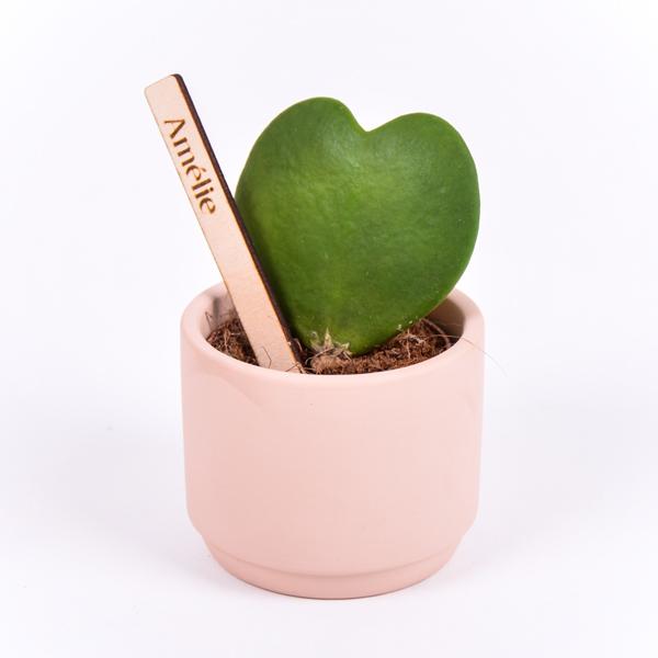 Gegraveerde plantenprikker recht incl. potje Amélie
