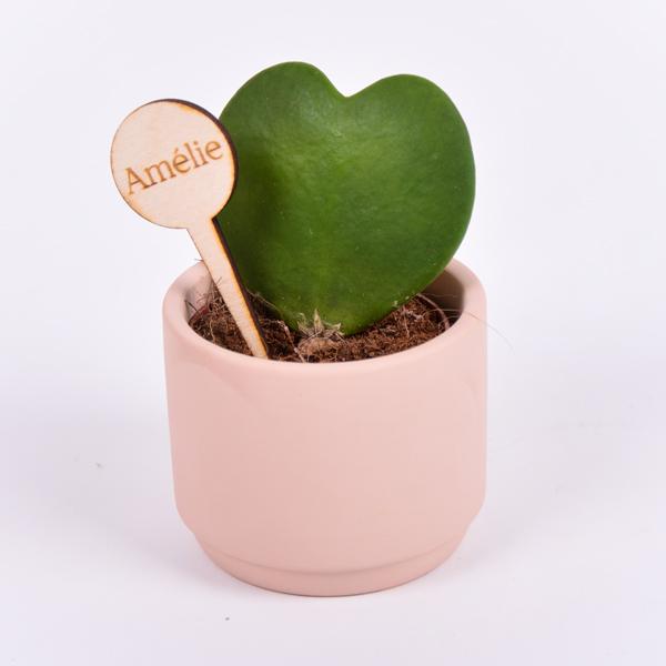 Gegraveerde plantenprikker rond incl. potje Amélie
