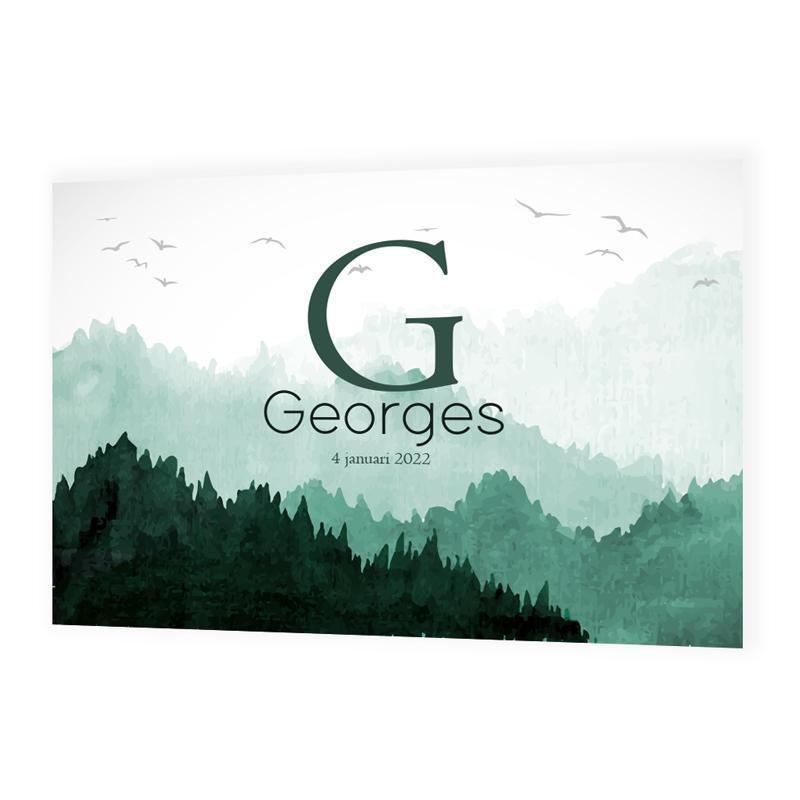 Faire-part de naissance Georges