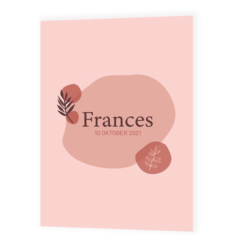 Geboortekaartje Frances