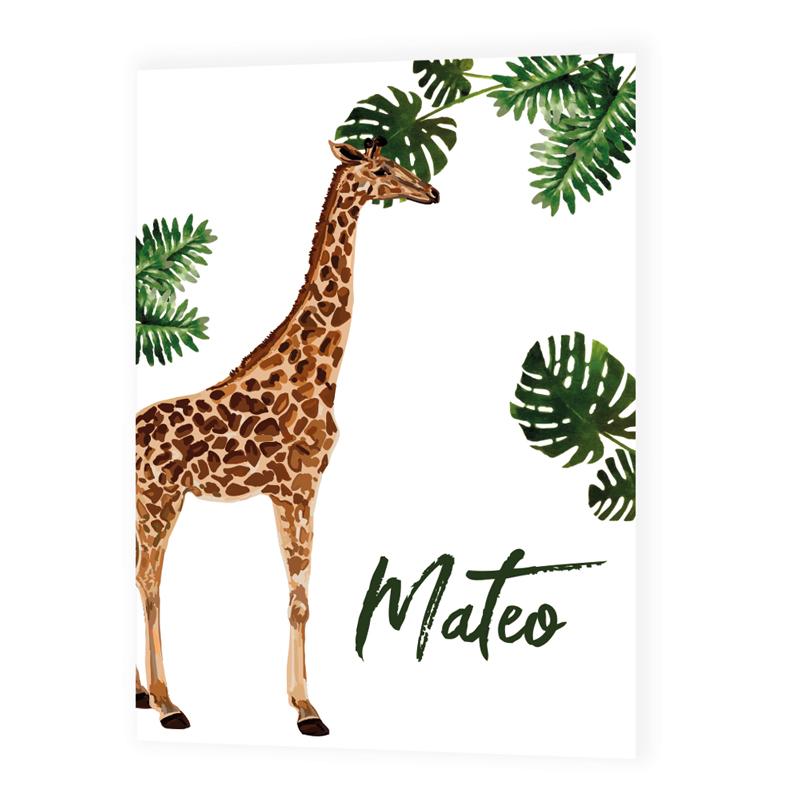 Faire-part de naissance Mateo