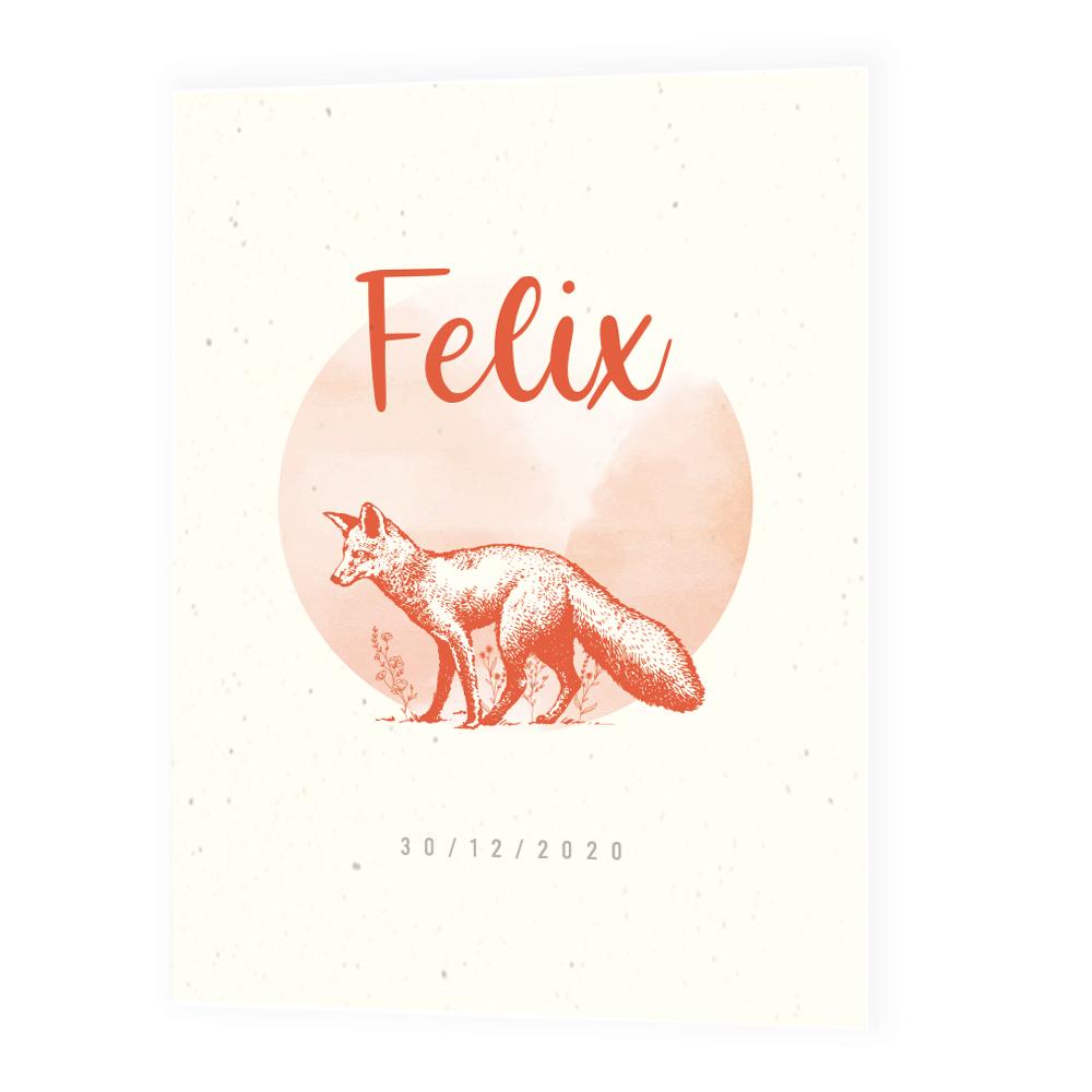 Faire-part de naissance Felix