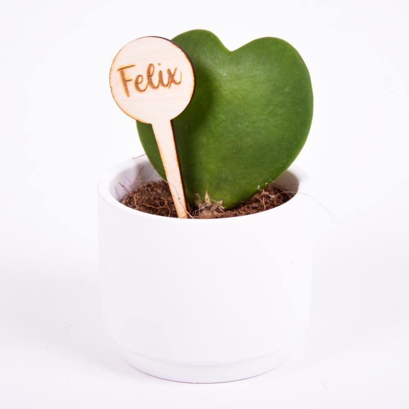 Gegraveerde plantenprikker rond incl. potje Felix