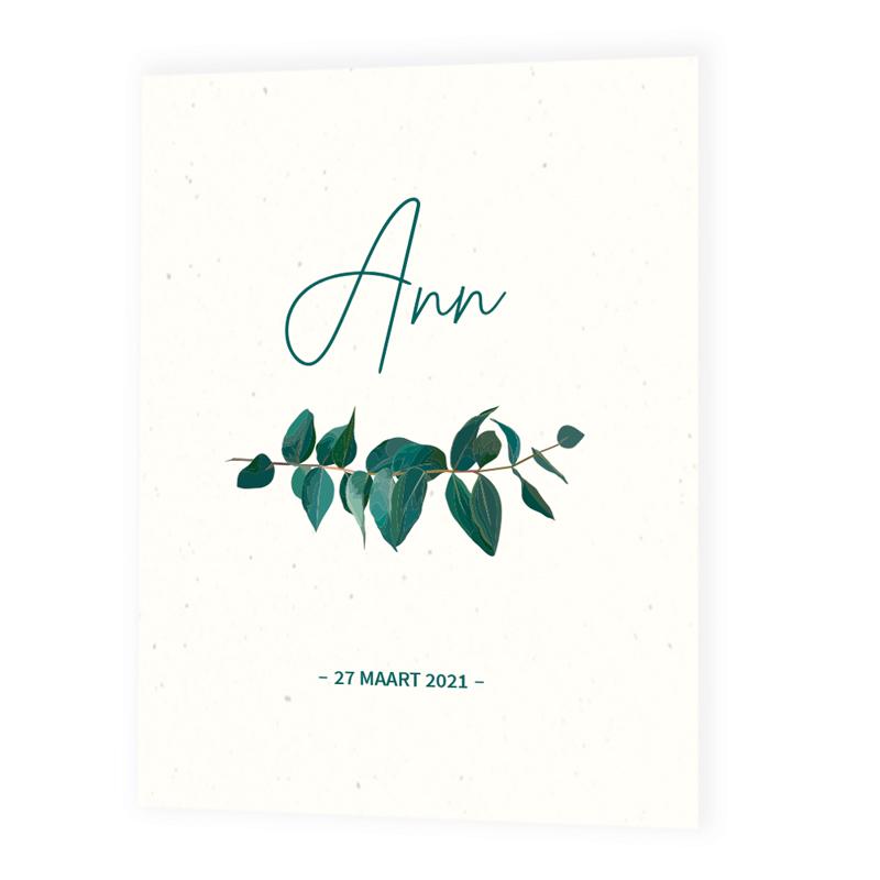 Faire-part de naissance Ann