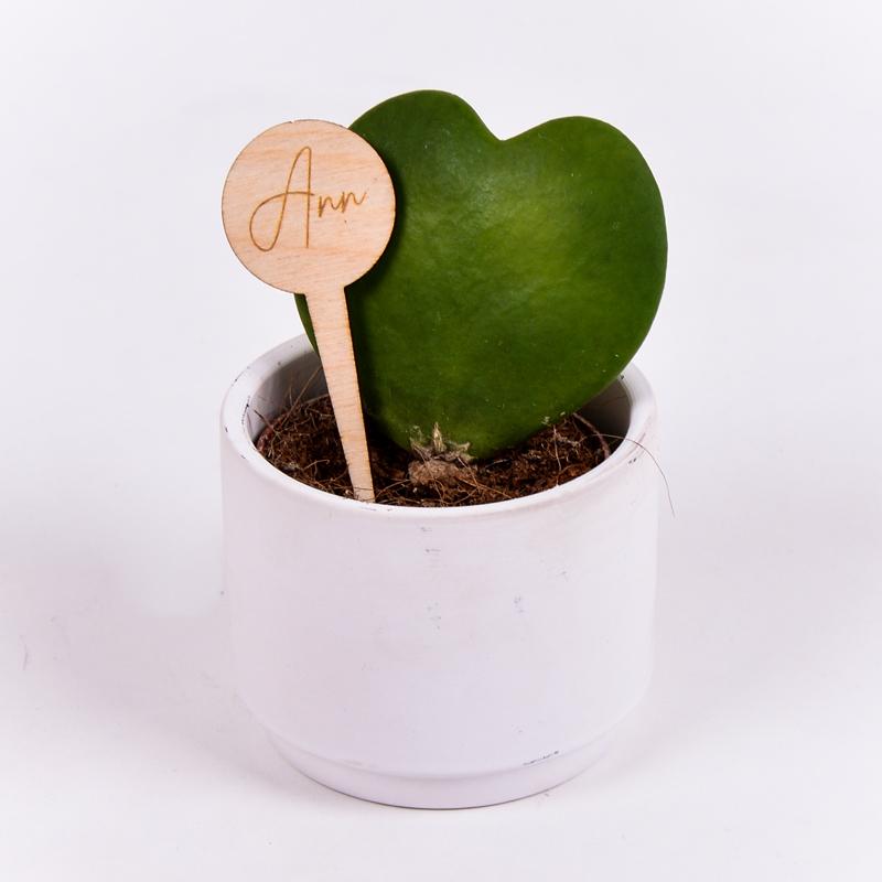 Gegraveerde plantenprikker rond incl. potje Ann