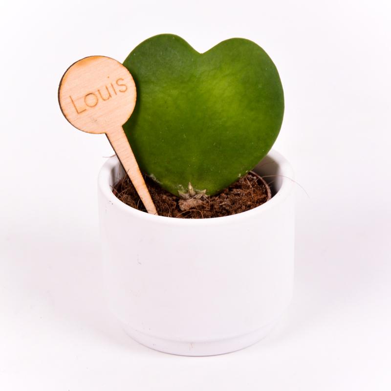 Gegraveerde plantenprikker rond incl. potje Louis