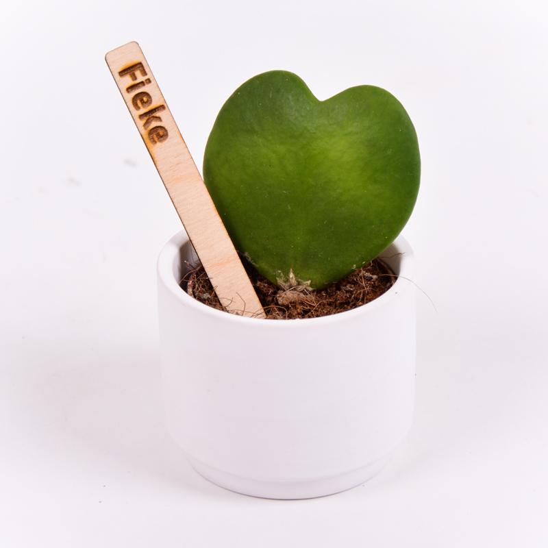 Gegraveerde plantenprikker recht incl. potje Fieke