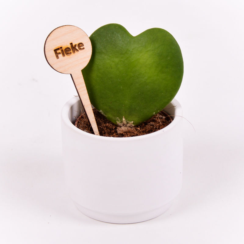 Gegraveerde plantenprikker rond Fieke