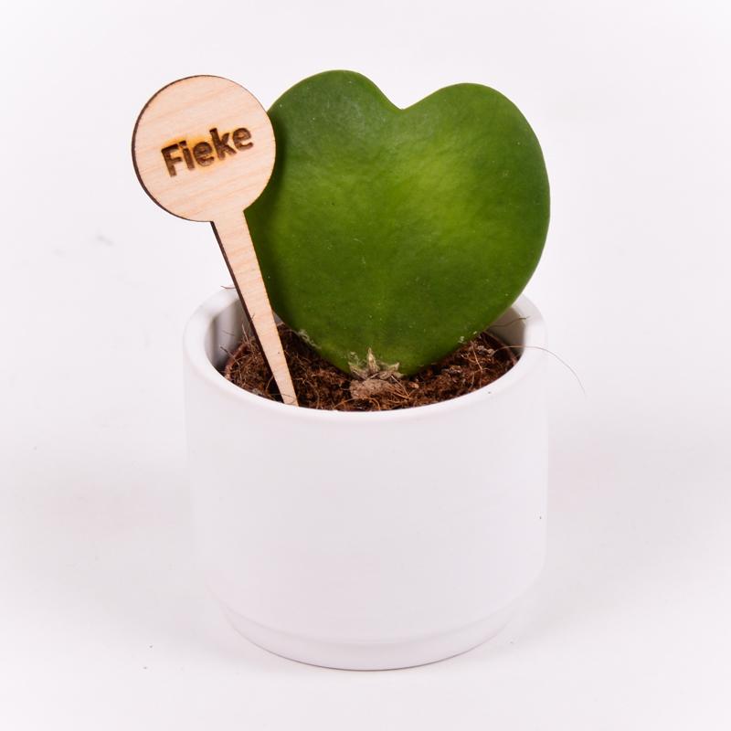Gegraveerde plantenprikker rond incl. potje Fieke