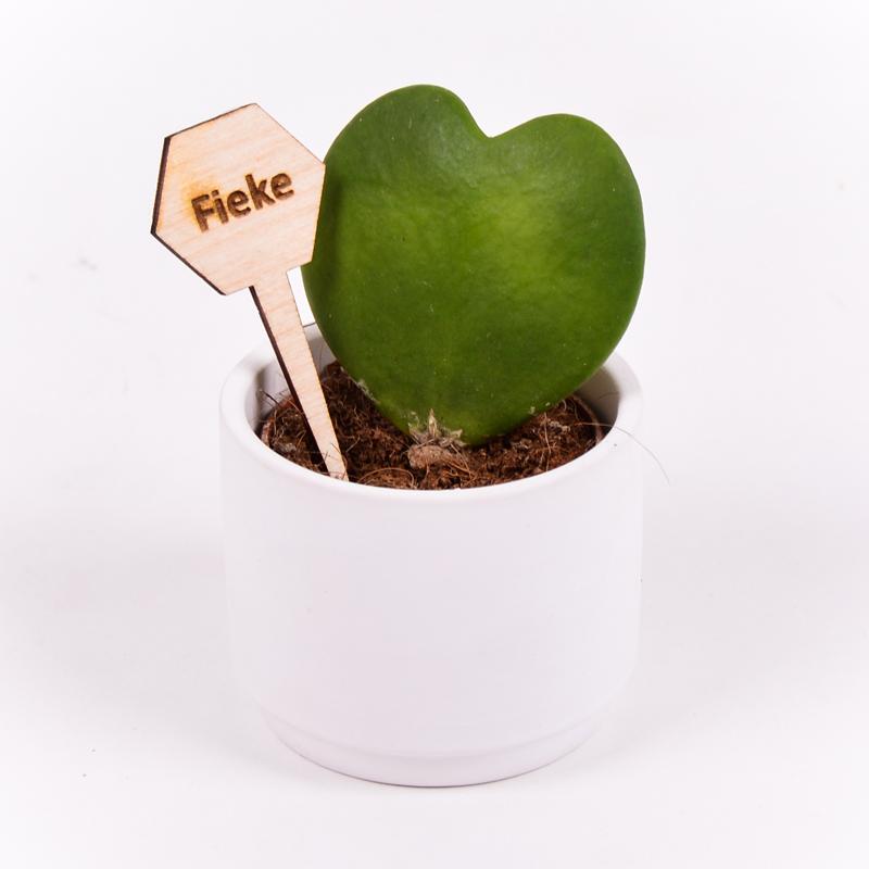 Gegraveerde plantenprikker zeshoek incl. potje Fieke