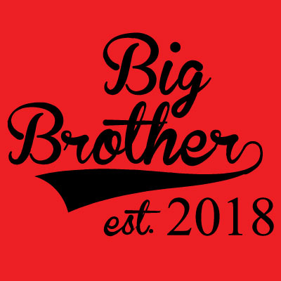 Big Brother est. 2018