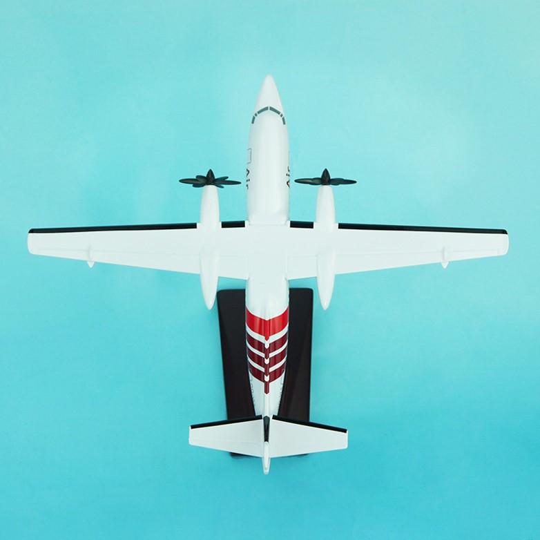 Air Antwerp scale model 100 - 12
