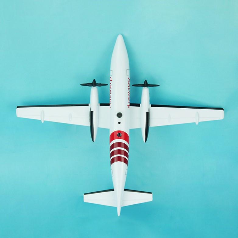 Air Antwerp scale model 100 - 13