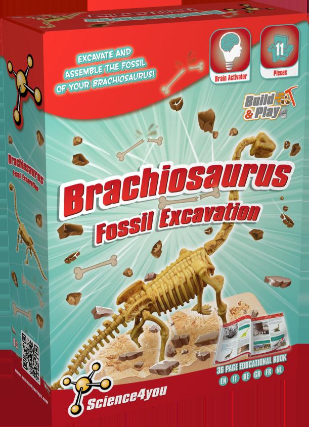 Brachiosaurus_Fossil_Excavation_3D_front